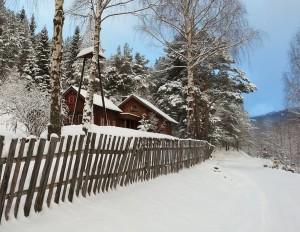 Vinter Sandom